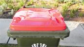 Red Lidded Bin